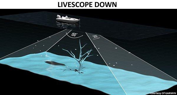 GPSMAP 942xs Touch - Panoptix Livescope Down