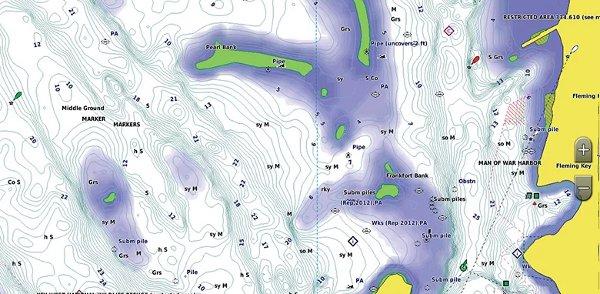 GPSMAP 1242xsv - BlueChart g3 Shallow Water Shading