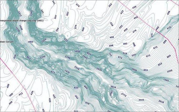 GPSMAP 742xs Touch - BlueChart g3 1' contours