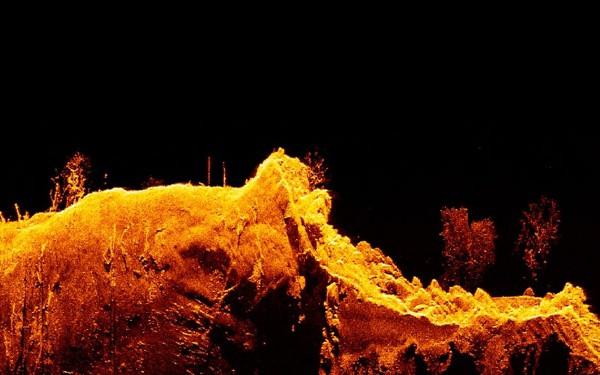Raymarine Element 9 HV - DownVision Sonar