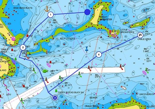 Raymarine e95 - Navionics Charts
